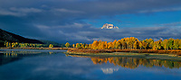937000036 panoramic view -  clouds from a clearnig storm hide all but the peak of mount moran along the oxbow bend with aspens in brillilant yellow fall color on the snake river in grand tetons national park wyoming