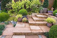 Zen Tiered patio steps with planters container garden, shrubs, ornamental grasses, evergreen boxwood trimmed, barberry bushes, in restful peaceful yellows and greens, lovely landscaping of a sloped hillside