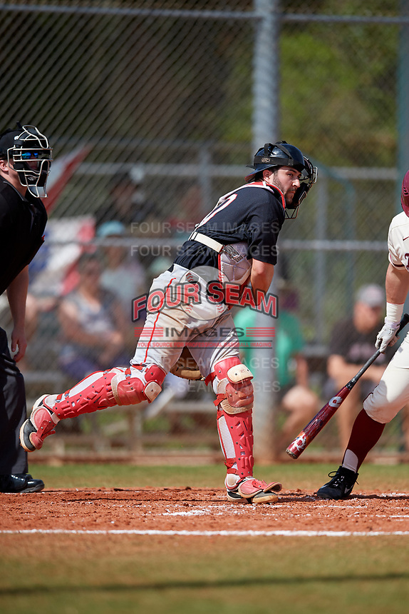 Ball State Cardinals catcher Chase Sebby (20) throws down during a game against the Saint Joseph's Hawks on March 9, 2019 at North Charlotte Regional Park in Port Charlotte, Florida.  Ball State defeated Saint Joseph's 7-5.  (Mike Janes/Four Seam Images)