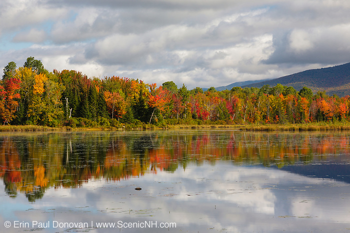 Pondicherry Wildlife Refuge - Reflection of autumn foliage in Cherry Pond in Jefferson, New Hampshire USA during the autumn months. Pondicherry was designated a National Natural Landmark in 1974 by the National Park Service.