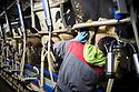 15/02/17 - OLLOIX - PUY DE DOME - FRANCE - GAEC de Savignat. La salle de traite - Photo Jerome CHABANNE