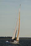 OnDeck Farr 40's racing in the charleston harbor south carolina