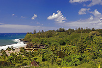 View of coastline and plants at Allerton Gardens, Kauai one of the 5 National Tropical Botanical gardens in the US