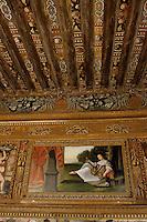 Europe/France/Auverne/63/Puy-de-Dôme/Env. de Saint-Germain-Lembron/Villeneuve-Lembron: Plafond peint XVIIème siècle