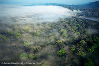 Clouds above Rio Beni, early morning, near border of Madidi National Park, above town of Rurrenabaque, lowland tropical rainforest, Bolivia. lowland tropical rainforest, Bolivia.