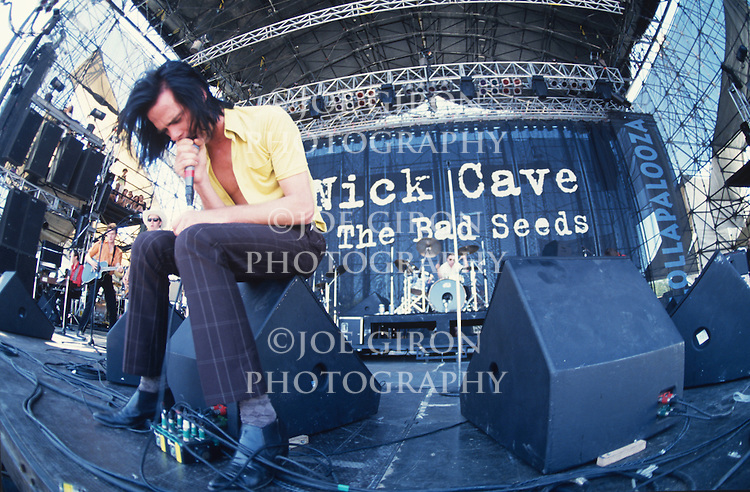 Various live photographs of the rock band, Nick Cave and the Bad Seeds