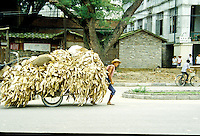 Pulling a cart of paper in rural China