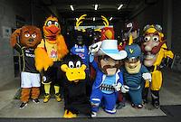 141123 T20 Cricket - Great Mascot Race