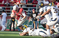 Trevor Guyton creates the sack on Jeff Tuel. The University of California football defeated Washington State University 20-13 at Martin Stadium in Pullman, Washington on November 6th, 2010.