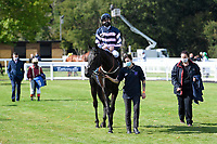 Winner of The Byerley Stud British EBF Novice Stakes (Plus 10) (Div 2) Champagne Piaff (right) ridden by Hector Crouch and trained by Gary Moore is led into the Winners enclosure during Horse Racing at Salisbury Racecourse on 1st October 2020