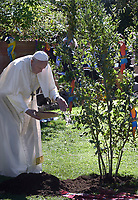 Pope Francis attends the celebration of the Season of Creation with the planting of a tree and a dedication of the Synod for the Amazon to St. Francis, on the occasion of the feast of St. Francis of Assisi. in the Vatican gardens.Vatican City, October 4th, 2019.