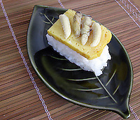 Killer bee larvae on sushi at a bug eating party in Tokyo, Japan. The bug eating movement is gaining in popularity in Japan where bug eating gourmet cooking parties are sold-out.  The insects are seen as the ultimate challenge in the world's gastronomical capitol but alo seen as an important alternative source of protein for the future and even the Japanese Space Program is looking into using insects as food in space travel.