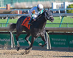 November 28, 2020: Southern Grayce, trained by Brad Cox and ridden by Fernando De La Cruz, wins Race 5, maiden special weight, at Churchill Downs in Louisville, Kentucky on November 28 2020. Jessica Morgan/Eclipse Sportswire.