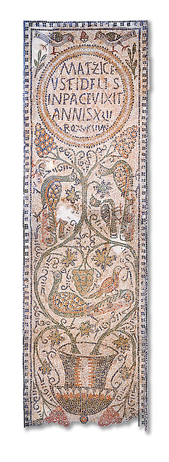 The Christian memorial funerary mosaic of Matziceus, a Libyan, with the inscription reading: 'the faithful Matziceus lived in peace for 42 years, rested (died) on the fifteenth of the calends of June'.<br /> <br /> The panel is decorated with vines which grow out of a cantharus, a Greek style drinking cup, which represents the fountain of life.<br /> <br /> 5th century Eastern Byzantine Roman mosaic from the Parish church of Demna, left AisleBardo Museum, Tunis, Tunisia. White background