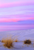 Moments after Sunset, White Sands, New Mexico  #L6