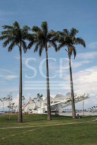 View of the Museu do Amanhã (Museum of Tomorrow) with three palm trees. Praça Mauá, Rio de Janeiro, Brazil.