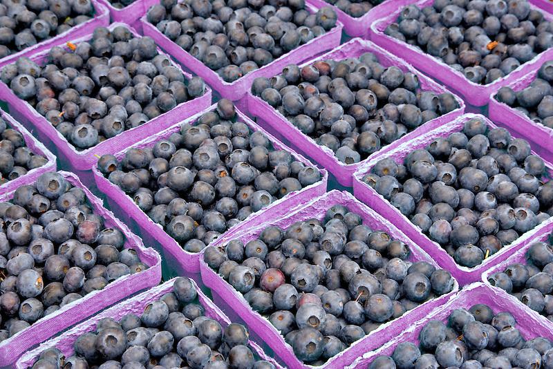 Blueberries  at Lake  Oswego Farmar's Market, Oregon