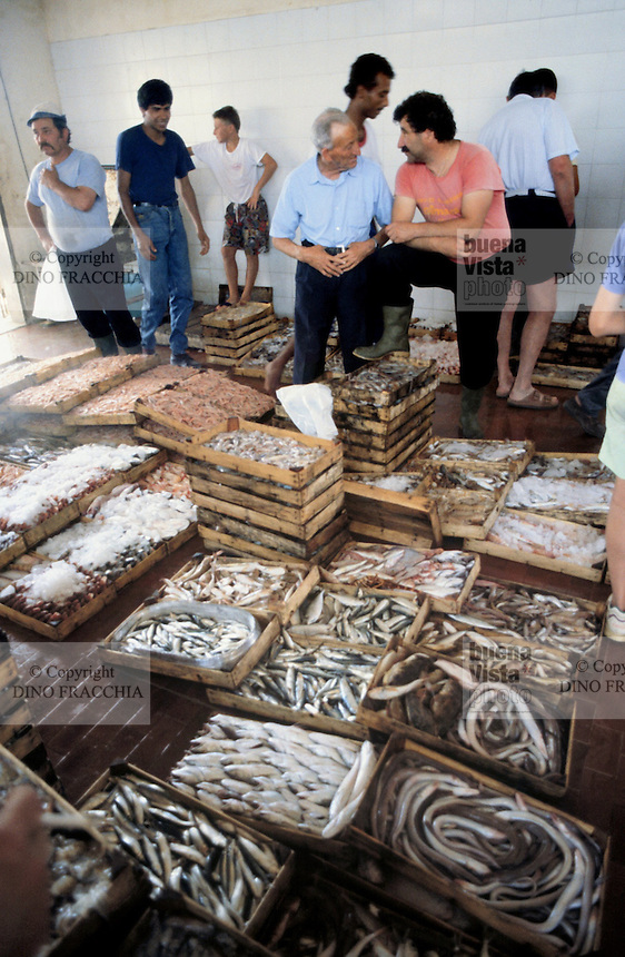 - market of the fish as soon as fished....- mercato del pesce appena pescato