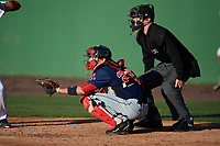 Umpire Thomas Roche and Salem Red Sox catcher Austin Rei (28) during the first game of a doubleheader against the Potomac Nationals on May 13, 2017 at G. Richard Pfitzner Stadium in Woodbridge, Virginia.  Potomac defeated Salem 6-0.  (Mike Janes/Four Seam Images)