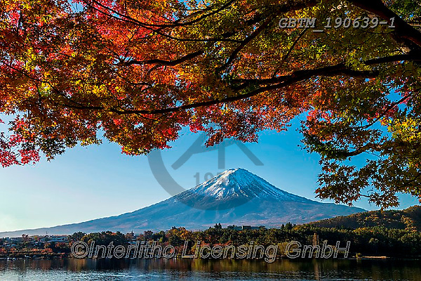 Tom Mackie, LANDSCAPES, LANDSCHAFTEN, PAISAJES, photos,+Asia, Japan, Japanese, Mount Fuji, Tom Mackie, Worldwide, autumn, autumnal, blue, composition, fall, framing, horizontal, hor+izontals, lake, lakes, landmark, landmarks, maple, nobody, scenery, scenic, seasons, tourist attraction, tree, trees, volcano+water, world wide, world-wide,Asia, Japan, Japanese, Mount Fuji, Tom Mackie, Worldwide, autumn, autumnal, blue, composition,+fall, framing, horizontal, horizontals, lake, lakes, landmark, landmarks, maple, nobody, scenery, scenic, seasons, tourist+,GBTM190639-1,#l#, EVERYDAY