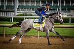 LOUISVILLE, KY - MAY 03: Fast and Accurate, owned by Kendall E. Hansen and trained by Michael J. Maker, exercises in preparation for the Kentucky Derby at Churchill Downs on May 03, 2017 in Louisville, Kentucky. (Photo by Alex Evers/Eclipse Sportswire/Getty Images)