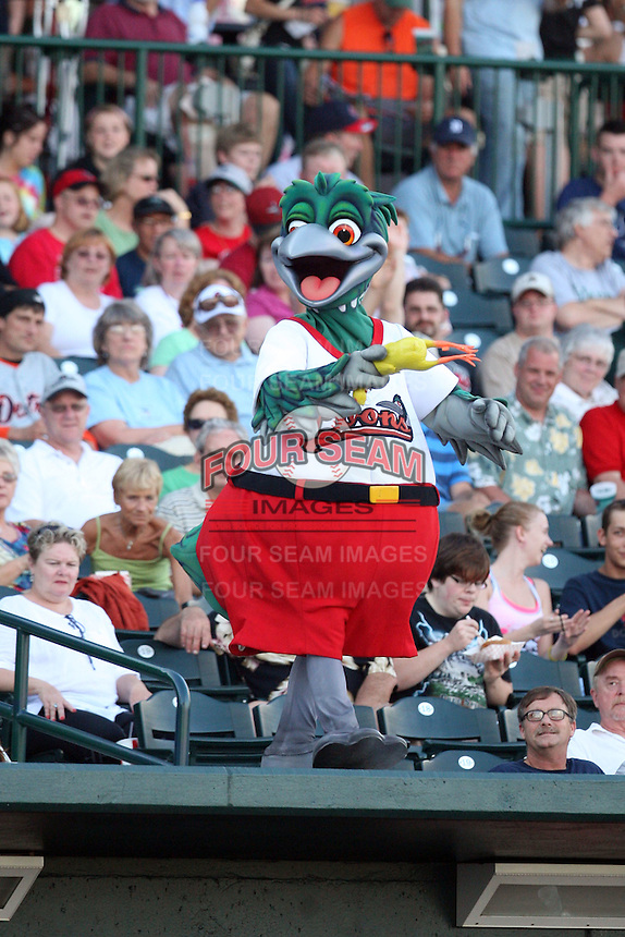 Great Lakes Loons Mascot at Dow Diamond in Midland, MI. The Loons are the Midwest League affiliate of the Los Angeles Dodgers. July 8, 2010. Photo By Chris Proctor/Four Seam Images