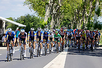 July 9th 2021. Carcassonne, Languedoc, France; The peloton during stage 13 of the 108th edition of the 2021 Tour de France cycling race, a stage of 219,9 kms between Nimes and Carcassonne.