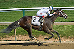 MAY 15, 2015: Stopchargingmaria, ridden by Jose Ortiz, wins the Allaire DuPont Distaff Stakes on Black-Eyed Susan Day at Pimlico Race Course in Baltimore, Maryland. Scott Serio/ESW/Cal Sport Media