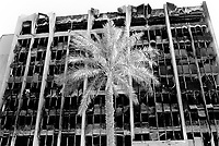 Iraq. Baghdad. Palm tree in front of the Ministry of Transport. The building was looted and burned by thieves, called Ali Baba. © 2003 Didier Ruef