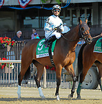 July 4, 2021: Wicked Trick, ridden by Jose Lezcano, in the post parade prior to the 2021 running of the G2 John A. Nerud S. at Belmont Park in Elmont, NY. Sophie Shore/ESW/CSM