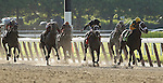 June 8, 2013. CORRECTED CAPTION Palace Malice (right), trained by Todd Pletcher and ridden by Mike Smith, wins the Belmont Stakes. Oxbow (#7), Gary Stevens up, was second and Orb (#5), with Joel Rosario, was third. Belmont Park, Elmont, New York.  (Joan Fairman Kanes/Eclipse Sportswire)