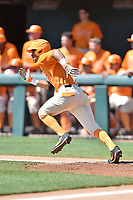 Tennessee Volunteers designated hitter Benito Santiago (31) runs to first base during a game against the South Carolina Gamecocks at Lindsey Nelson Stadium on March 18, 2017 in Knoxville, Tennessee. The Gamecocks defeated Volunteers 6-5. (Tony Farlow/Four Seam Images)