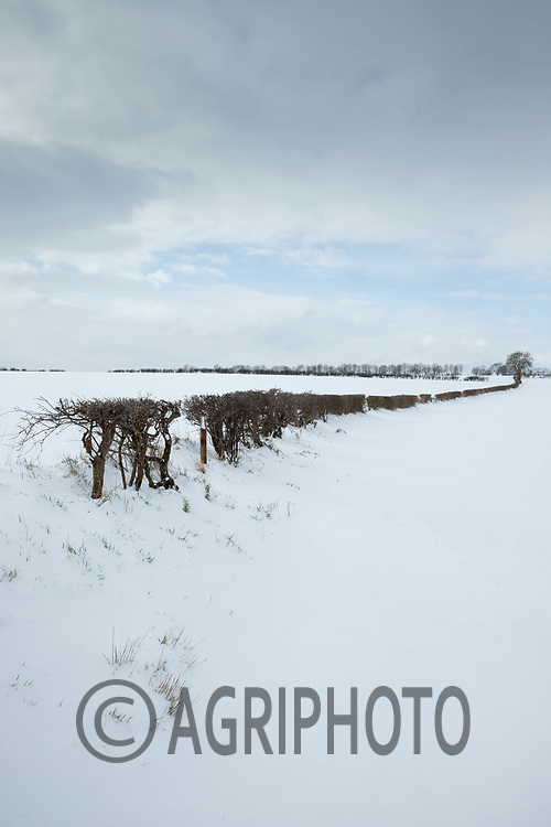 9-2-2021 Snow covered farmland  in Rutland<br /> ©Tim Scrivener Photographer 07850 303986<br />      ....Covering Agriculture In The UK....
