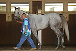 July 29, 2012 Tune Me In walks in the paddock before the Oceanport Stakes. Tune Me In, Paco Lopez up, wins the grade III Oceanport Stakes at Monmouth Park Racetrack, Oceanport, NJ. @Joan Fairman Kanes/Eclipse Sportswire