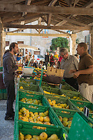 France, Aude (11), Lagrasse, labellisé Les Plus Beaux Villages de France, Jour de marché place de la Halle//   France, Aude, Lagrasse, labelled Les Plus Beaux Villages de France (The Most Beautiful Villages of France),  Day market place of Halle