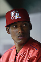 Palm Beach Cardinals Cesar Valera (26) in the dugout during a game against the Lakeland Flying Tigers on April 13, 2015 at Joker Marchant Stadium in Lakeland, Florida.  Palm Beach defeated Lakeland 4-0.  (Mike Janes/Four Seam Images)