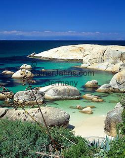 South Africa, near Cape Town, Simon's Town - Boulders Beach
