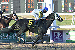 January 16, 2021: Title Ready wins the Louisiana Stakes at Fair Grounds Race Course in New Orleans, Louisiana. Parker Waters/Eclipse Sportswire/CSM