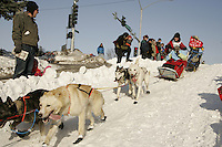 March 3, 2007   Norwegian Sigrid Ekran runs down the Cordova Hill during the Iditarod ceremonial start day in Anchorage