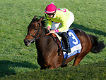 October 16, 2021: Shantisara (IRE) #3, ridden by jockey Flavien Prat wins the Queen Elizabeth II Challenge Cup Stakes (Grade 1) on the turf at Keeneland Racecourse in Lexington, K.Y. on October 16th, 2021. Candice Chavez/Eclipse Sportswire/CSM