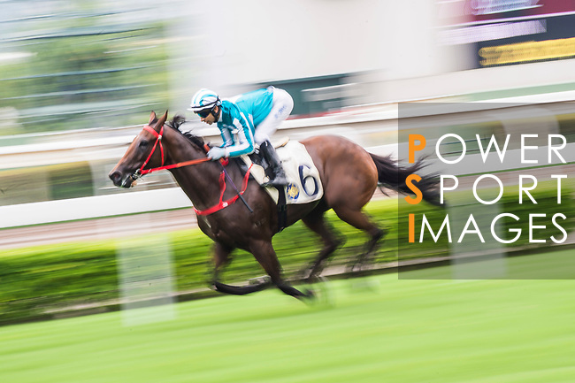 Horse Household King ridden by Joao Moreira competes during the Race 4, Lung Wui Handicap, at the Sha Tin Racecourse on 03 September 2017 in Hong Kong, China. Photo by Marcio Rodrigo Machado / Power Sport Images