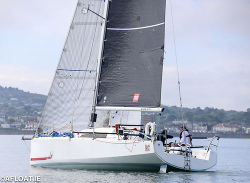 John O'Gorman's Sunfast 3600, Hot Cookie from the National Yacht Club