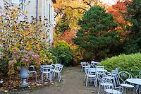 France, Allier (03), Villeneuve-sur-Allier, Arboretum de Balaine en automne, aire de repos derrière le château