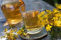 Johanniskraut-Tee, Johanniskrauttee, Tee aus Johanniskraut, Blütentee, Heiltee, Kräutertee, Johanniskraut, Tüpfel-Johanniskraut, Echtes Johanniskraut, Durchlöchertes Johanniskraut, Tüpfeljohanniskraut, Tüpfel-Hartheu, Hartheu, Hypericum perforatum, St. John´s Wort, Tipton's weed, rosin rose, goatweed, chase-devil, Klamath weed, herb tea, herbal tea, tea, Le millepertuis perforé, millepertuis commun, millepertuis officinal