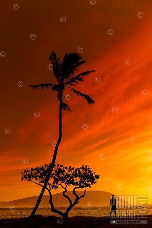 Man enjoying a breathtaking seascapeat sunsetwith Koko Head at the horizon..