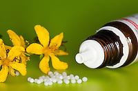 Homöopathie, Arznei, Globuli, Globulus, Kügelchen, Streukügelchen, Alternativmedizin, Medizin, homöopathisches Arzneimittel, Homeopathy, homoeopathy, homeopathic, alternative medicine, medicine, Homeopathic pills, pills, globule, globules. Zusammen mit Johanniskraut, Hypericum, St John's wort, St. John's wort