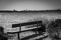 A park bench on the bay shore with the San Francisco skyline on the horizion in black and white.