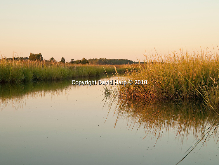 Colbourn Creek