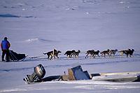 Linwood Fiedler on Yukon Leaving Galena Checkpoint Alaska