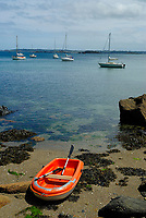 Granitic beach at low tide covered by rockweed, Fucus serratus, and sailing boats anchored in a cove in the Bay of Morlaix, Atlantic Ocean, North of Brittany, North of France, Europe